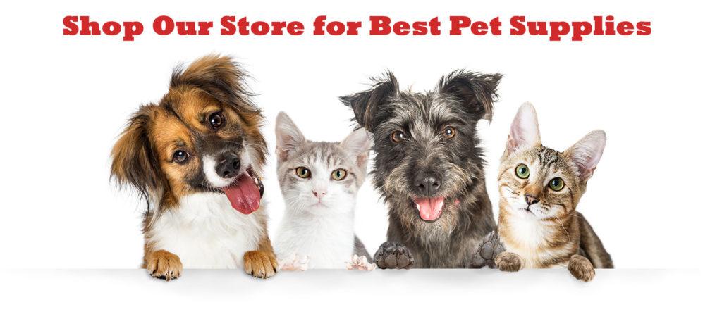 Aveery's Pet Store